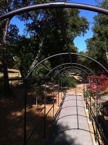 Monet S Arch Amazing Rose Trellis