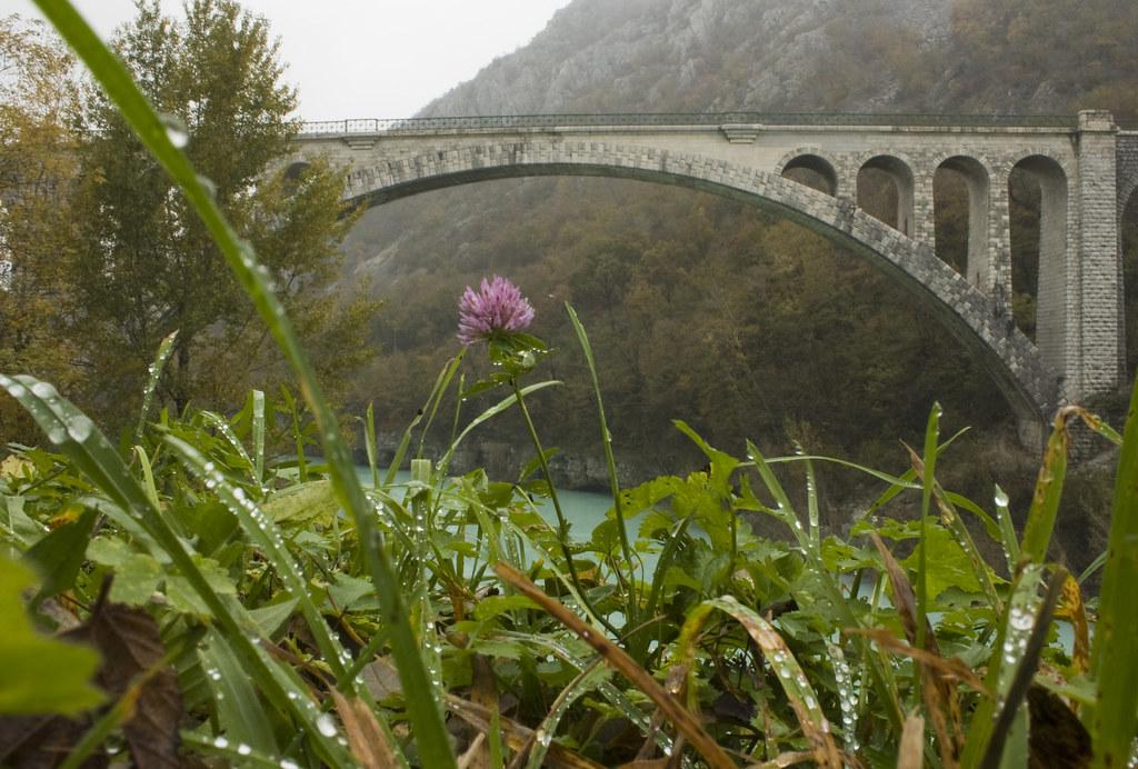 """lungo le rive dell'Isonzo_EXPLORE  """"Front Page"""" photo by passionescatto"""
