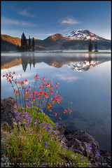 Cascades and Columbine photo by Sean Bagshaw