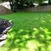 Garden Done VII