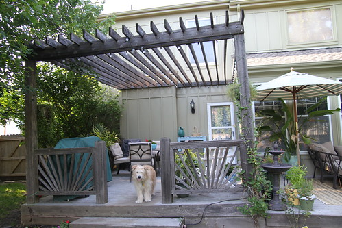 Remodelaholic shady places pergola update anything pretty - Decoracion patios exteriores ...