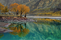 Pure Aqua Reflection photo by M Atif Saeed
