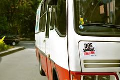 Doe Sangue photo by Hugodg