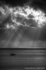 nmr011 2011 - Explored photo by Nuno M. Ribeiro