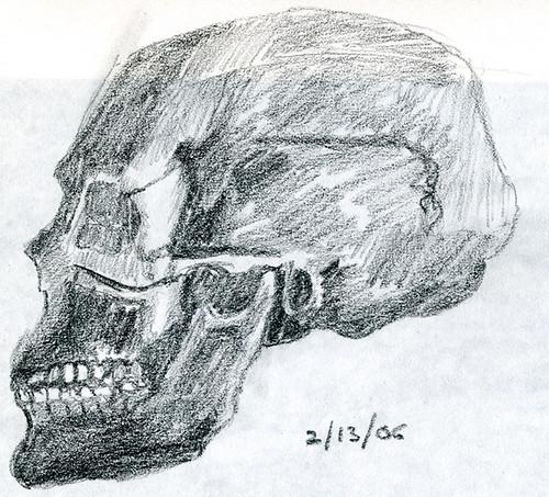 Skull in 5B pencil