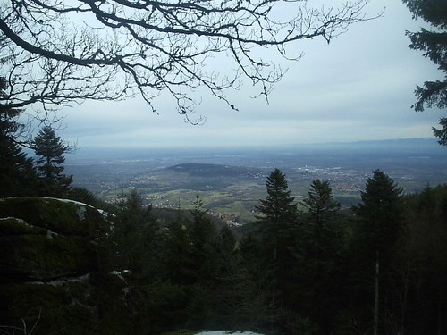 View from the Voges near St Odile