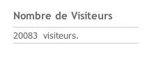 20 000 visiteurs