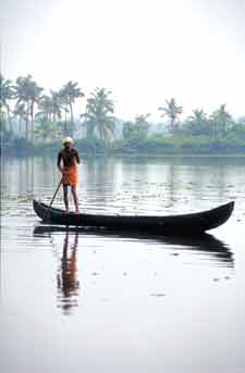 65 Kerala Backwaters India