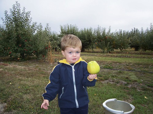 Nathan apple