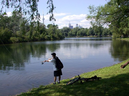 Fishing in Toronto