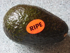 I wonder if it's ripe?