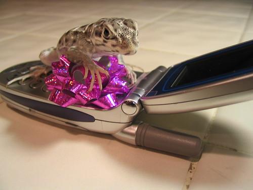 Cellphone!