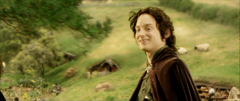 rotk Frodo goes back to the Shire