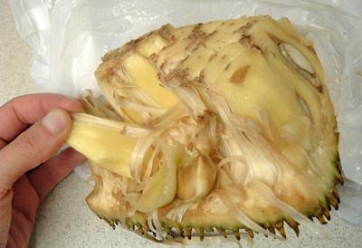 Jackfruit Insides