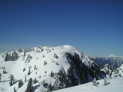 View from Mt. Seymour