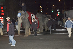 Elephants arriving at 34th Street