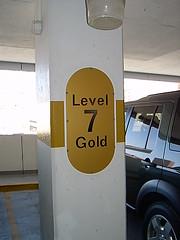 Level 7 Gold