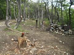 Ushuaia - 08 - Park axe