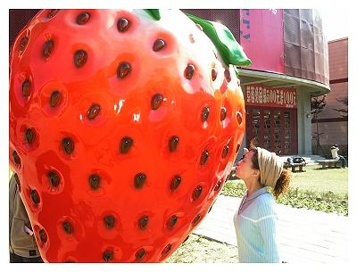 草莓文化館_親吻草莓