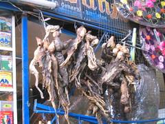 Dried Llama fetus.  Yum