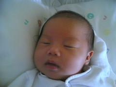 I am one month old