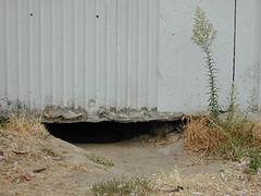 6. frontdoor