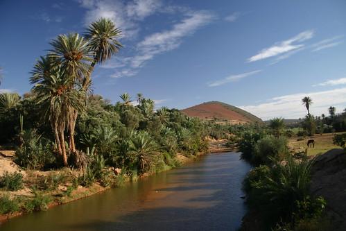 Exotic scenery along Assaka River, East of Tiznit.