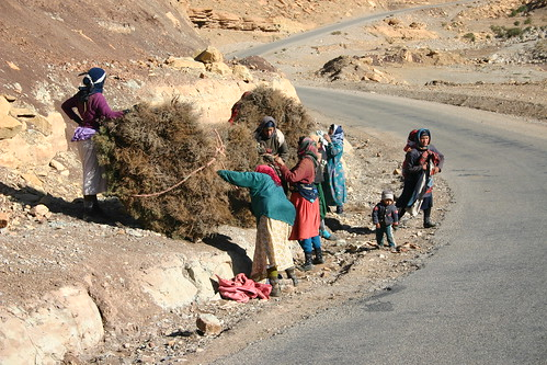 Carrying the burden of life. Tamtattouchte, High Atlas.