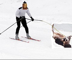 skijoringstan4