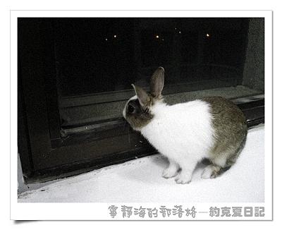 約克夏日記_20060103_思鄉