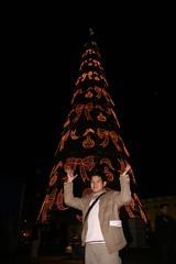 里斯本的世界最大聖誕樹