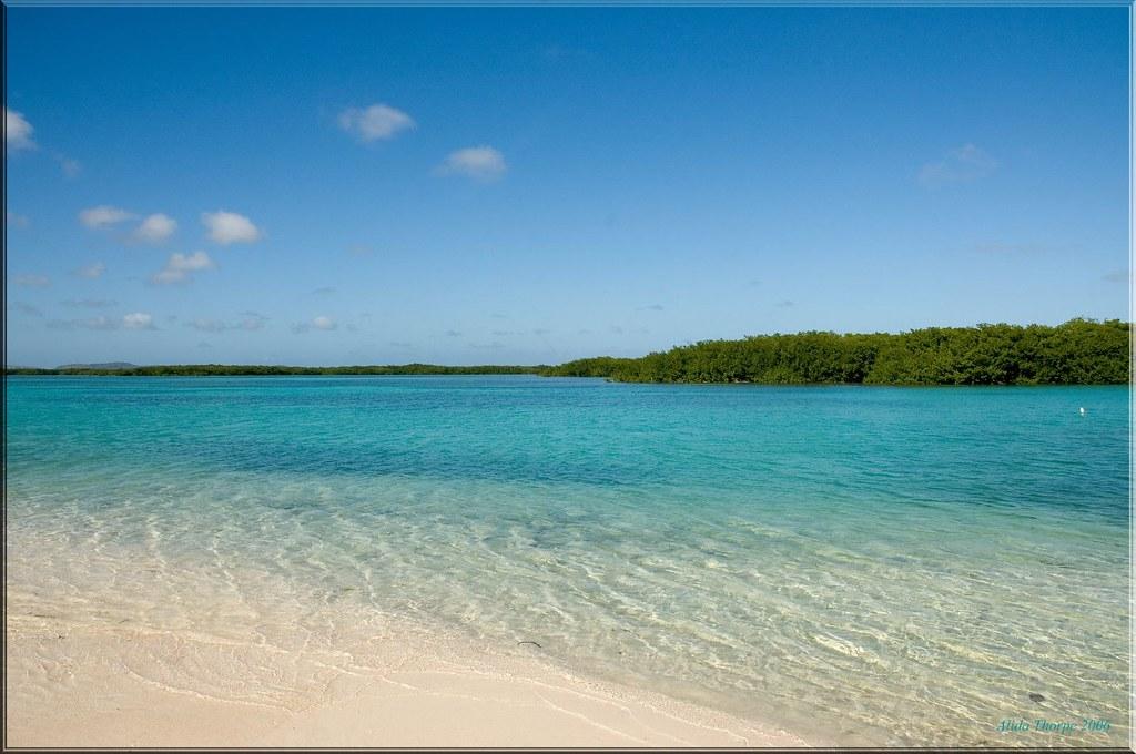 Loc Bay, Bonaire