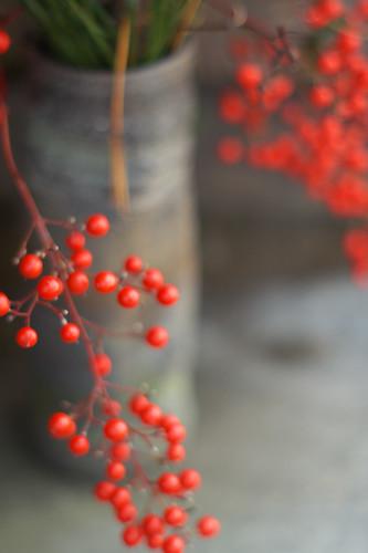 赤い粒 #2