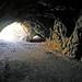 Bronson Cave (2956)