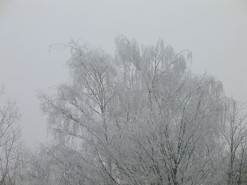 Winter in Schwabenheim