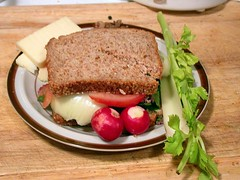 Bison sandwich with sprouted wheat bread