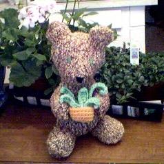 Neville Bear C