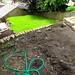 More Garden III