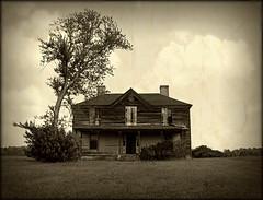 No Sign of Life photo by History Rambler