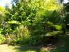 Vu jardin 13