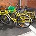 Bikes III