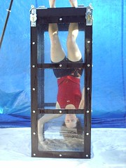 Dayle Krall performing the Chinese Water Torture Cell photo by Dayle Krall:Most Accomplished Female Escape Artist