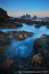 August 2010 Landscape - Starfish Swirl photo by Kah Kit Yoong