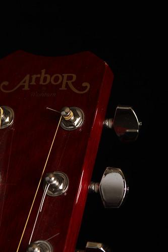 Guitar-8