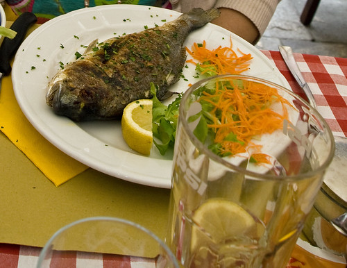 Fish in Vienna