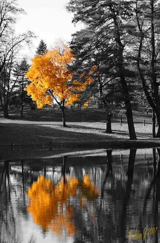 Autumn Reflection photo by alanj2007