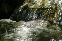 Water Fall photo by tropicalart77 (Tammy Dial Gray)