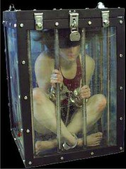Dayle Krall's Water Torture Tank and Cage escape photo by Dayle Krall:Most Accomplished Female Escape Artist