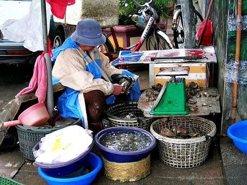 布袋港 - 觀光魚市門口正在處理蚵仔的婦人
