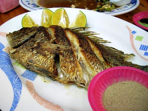布袋觀光魚市 - 烤黑鯛